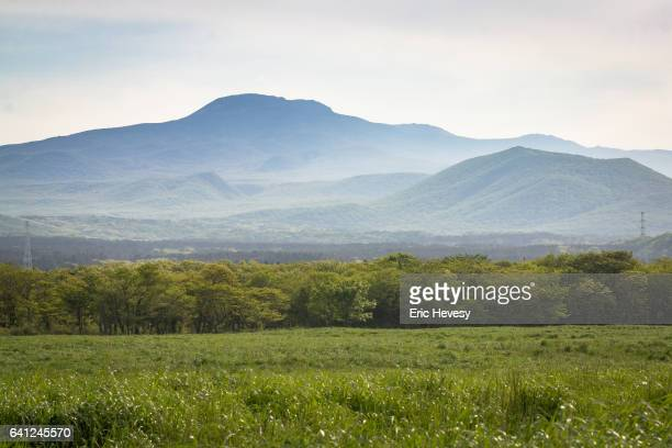 view of mt. hallasan in summer - hallasan stock photos and pictures