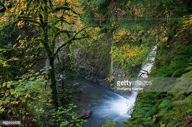 View of Multnomah Falls from path to foot bridge in the fall a waterfall near Portland along the Columbia River Gorge in Oregon USA