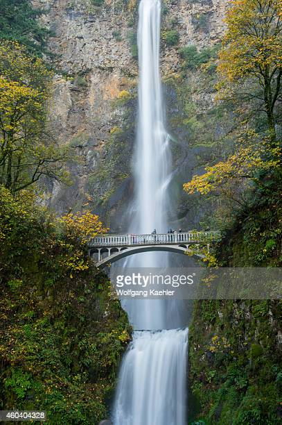 View of Multnomah Falls with foot bridge in the fall a waterfall near Portland along the Columbia River Gorge in Oregon USA