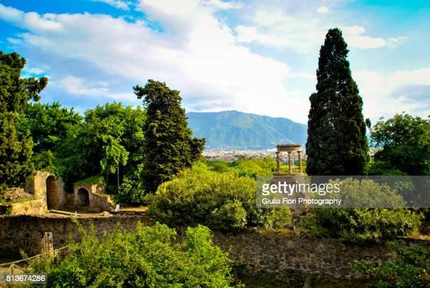 view of naples from pompeii - pompeii stock photos and pictures