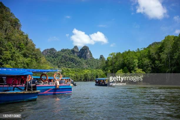 view of natural and beauty river at langkawi island - shaifulzamri stock pictures, royalty-free photos & images