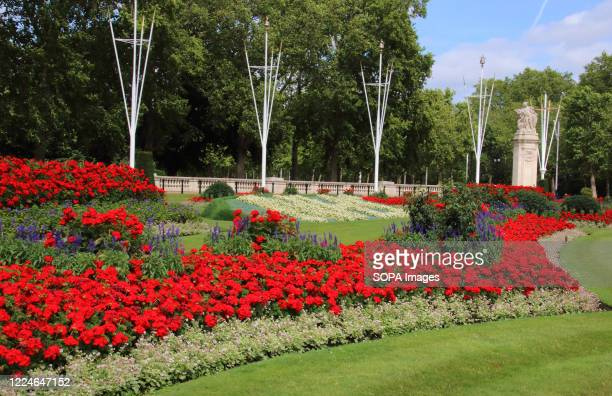 View of NHS colourful flowerbeds. Two special 30ft-long flowerbeds have been unveiled in front of Buckingham Palace in tribute to NHS workers ahead...