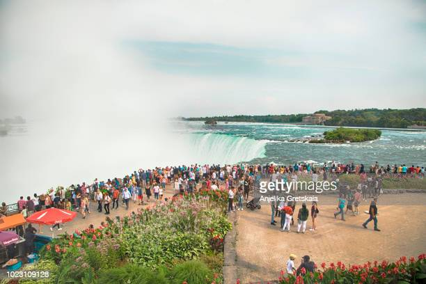 view of niagara falls in summer. - niagara falls photos stock photos and pictures