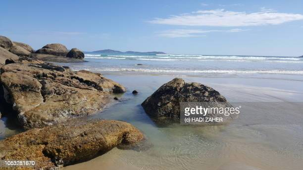 A view of Norman Beach | Wilson's Promontory National Park | Victoria
