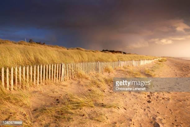 view of normandie sand dune at dusk, france - cotentin photos et images de collection