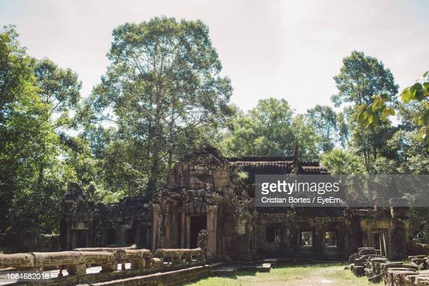 view of old ruins against trees - bortes ストックフォトと画像