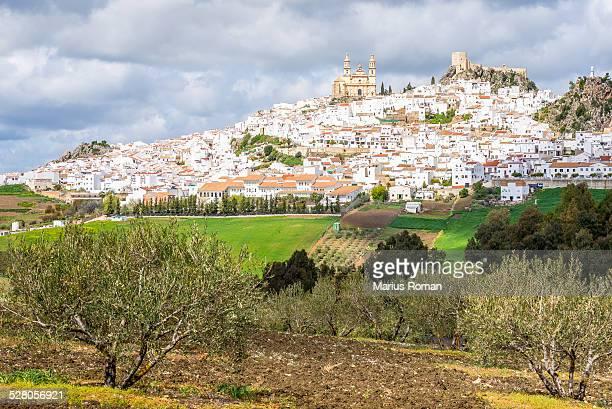 View of Olvera,  white village, Cadiz, Andalusia