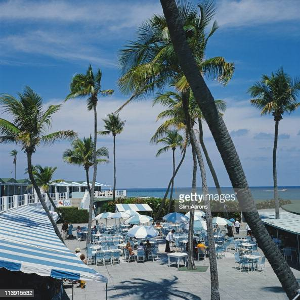 A View Of Palm Trees At A Beach Resort In Boca Raton