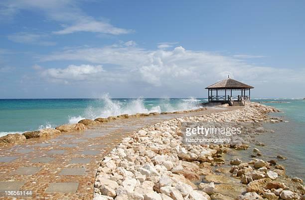 view of palmyra beach - paisajes de jamaica fotografías e imágenes de stock
