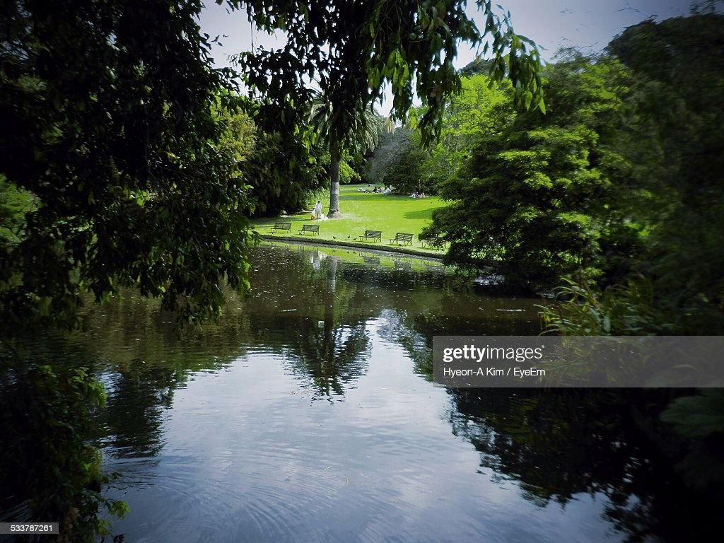 View Of Park : Foto stock
