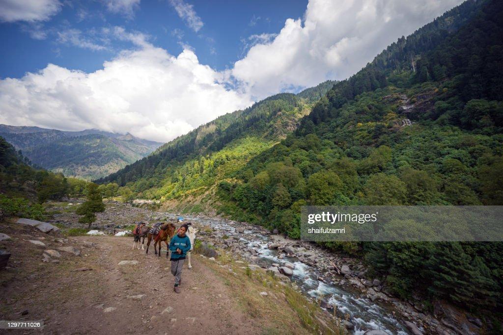 View of part of Naranag-Gangabal trek, undoubtedly one of the most beautiful treks in Kashmir region of Jammu & Kashmir state. : Stock Photo