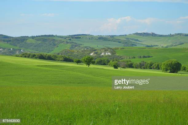 view of pastures, tree lines and mountain in crossing diagonal lines - san quirico d'orcia stock pictures, royalty-free photos & images
