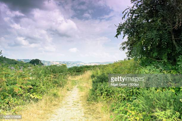 view of path in countryside - nigel owen stock pictures, royalty-free photos & images