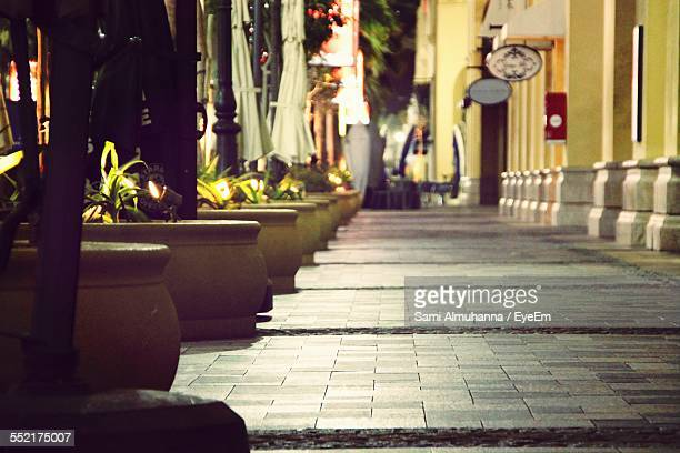 View Of Pavement With Potted Plants