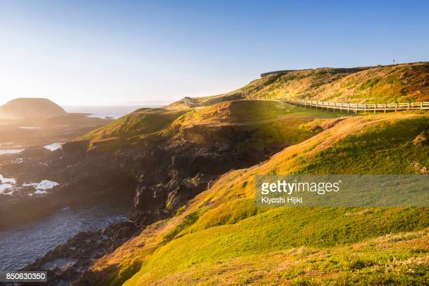 view of philip island, australia - phillip island stock pictures, royalty-free photos & images