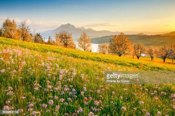 View of Pilatus and Lake Lucerne Switzerland