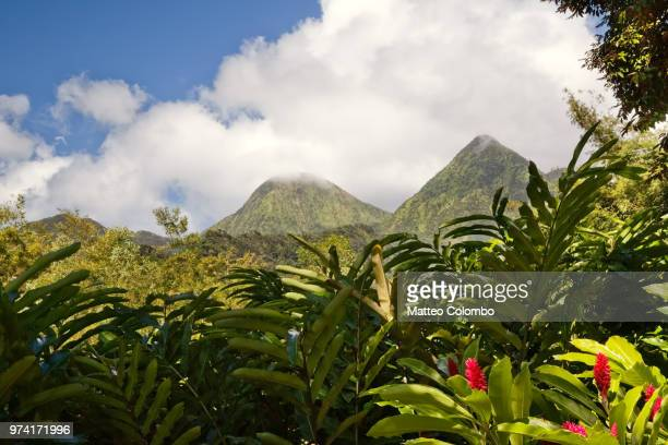 view of piton du carbet volcanic mountains in martinique - antilles stock pictures, royalty-free photos & images
