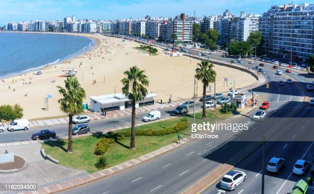 view of pocitos beach, montevideo, uruguay - montevideo stock pictures, royalty-free photos & images