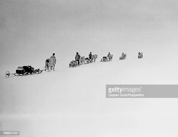 View of ponies and men on the march with sledges and supplies on the Great Ice Barrier photographed during the last, tragic voyage to Antarctica by...