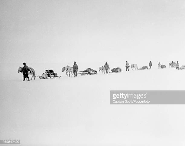 A view of ponies and men on the march with sledges and supplies on the Great Ice Barrier photographed during the last tragic voyage to Antarctica by...
