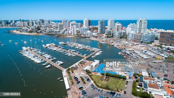 View of port of Punta del Este, aerial view, drone point of view, Uruguay