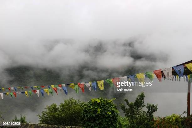 view of prayer flags at trongsa dzong with foggy hills, bumthang - ipek morel stock pictures, royalty-free photos & images