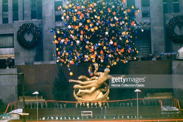 View of Prometheus the gilded bronze statue by sculptor Paul Manship reclining beneath the Christmas tree at Rockefeller Center Plaza midtown...
