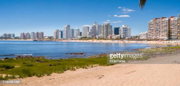 view of punta del este city, beach, ocean, skyline, uruguay - uruguay stock-fotos und bilder
