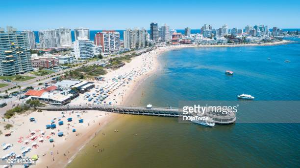 view of punta del este city, coastline, aerial view, drone point of view, uruguay - uruguay stock pictures, royalty-free photos & images