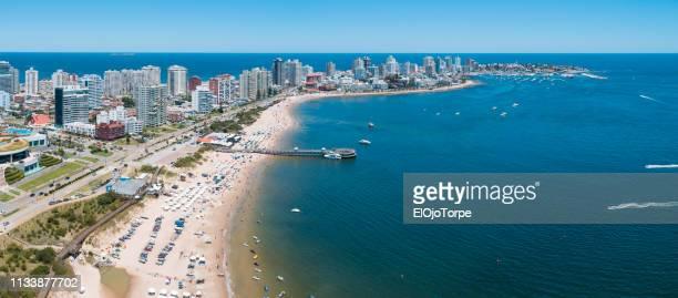 view of punta del este city, coastline, aerial view, drone point of view, uruguay - maldonado uruguay stock pictures, royalty-free photos & images