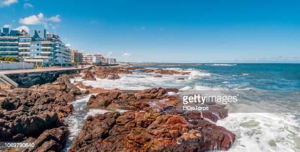 view of punta del este city, uruguay - maldonado uruguay stock pictures, royalty-free photos & images