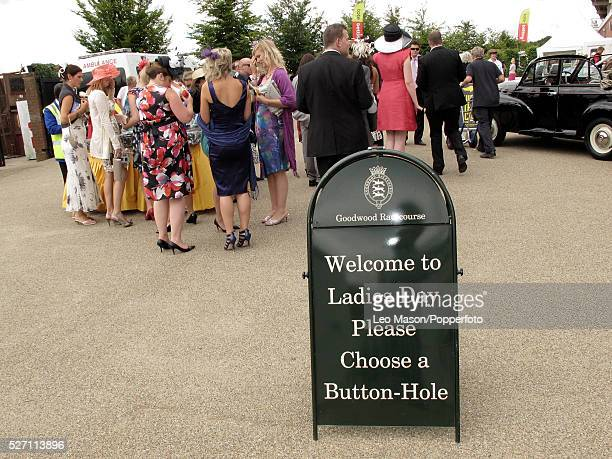 View of racegoers and racing fans preparing to watch the racing on Ladies Day during the 2010 Glorious Goodwood festival at Goodwood racecourse near...