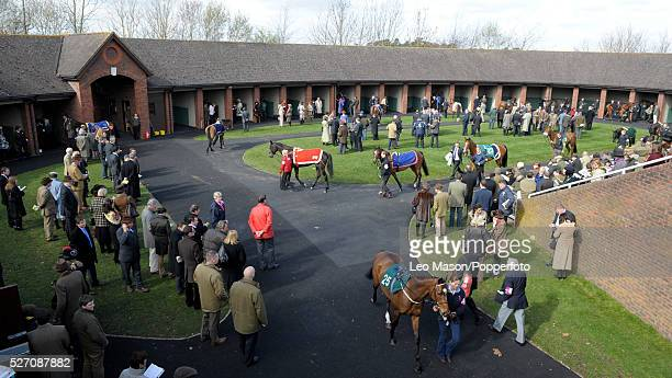 View of racehorses in the saddling enclosure prior to competition on Gold Cup day during the Cheltenham National Hunt Festival at Cheltenham...
