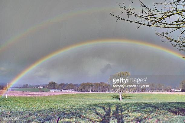 view of rainbow over grassy field - fermoy stock photos and pictures