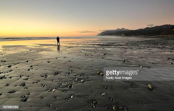 View of Rapahoe Beach, West Coast New Zealand