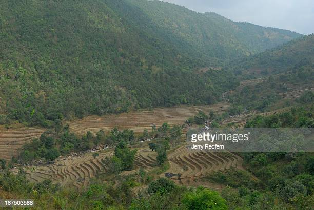 View of rice terraces in a valley along the road to Loi Mwe in rural Shan State Myanmar