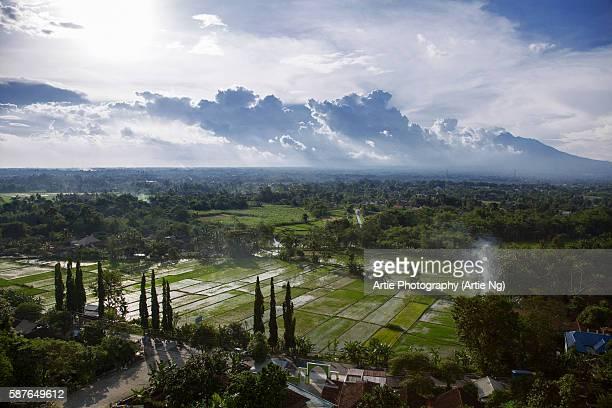 view of ricefields and the surroundings in kewu plain near prambanan, yogyakarta, central java, indonesia - surakarta stock photos and pictures