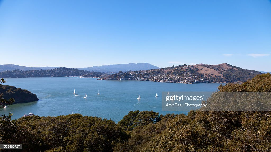 View of Richardson bay from Angel Island : Stock Photo