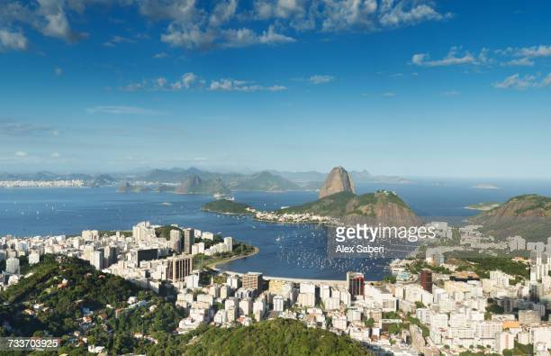 a view of rio de janeiro and sugarloaf mountain. - alex saberi stock pictures, royalty-free photos & images