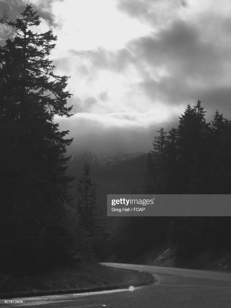 View of road during foggy weather : Stock Photo