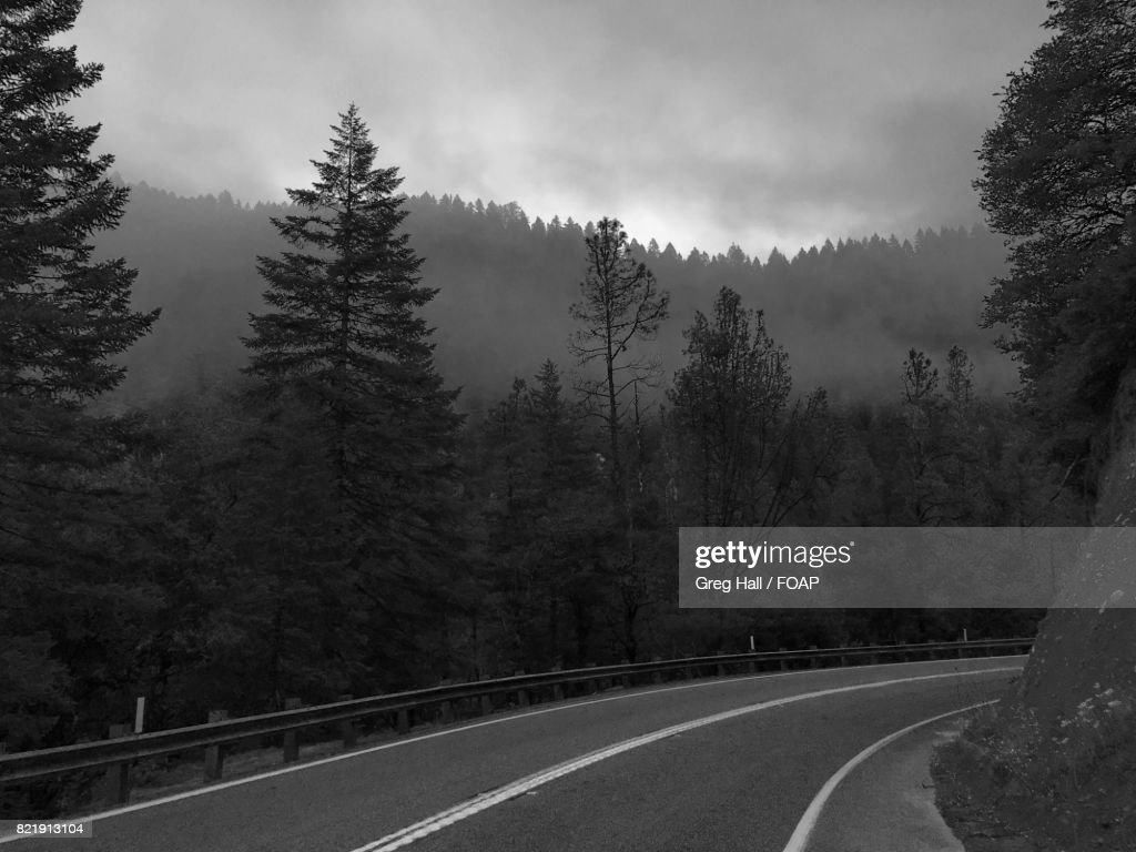 View of road passing through forest : Stock Photo
