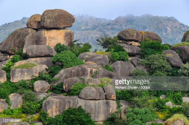 view of rocks and trees, jos, jos plateau, nigeria - nigeria stock pictures, royalty-free photos & images