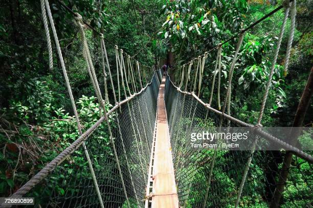 view of rope bridge in forest - taman negara national park stock photos and pictures