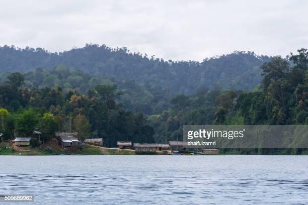 view of royal belum - shaifulzamri 個照片及圖片檔