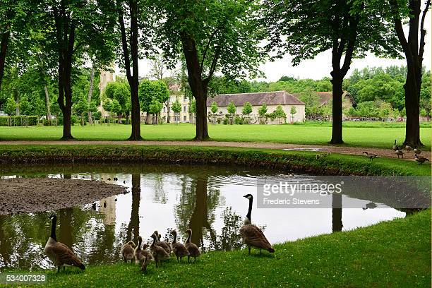 A view of Royaumont abbey park on May 24 2016 in AsnieresSurOise France The Royaumont foundation is undertaking extensive construction work to...