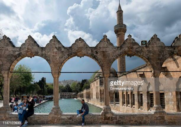view of sacred fishpond and mosque with tourists in sanliurfa. - emreturanphoto stock pictures, royalty-free photos & images