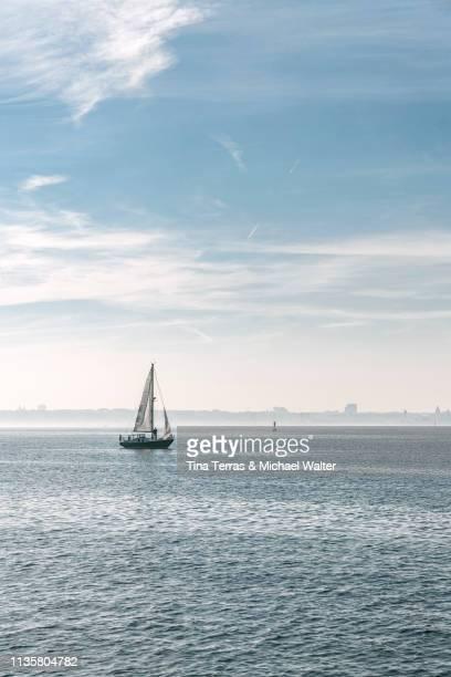 view of sailing boats on the sea in germany - meerlandschaft stock-fotos und bilder