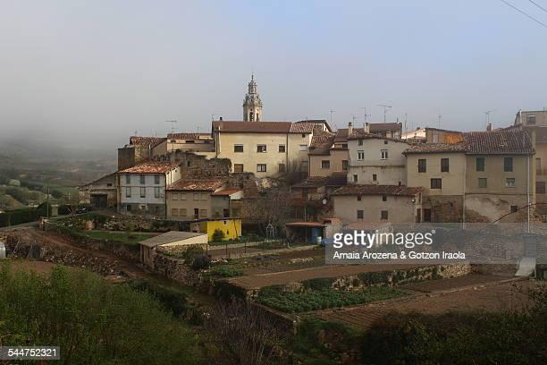 View of Salinillas de Buradon village