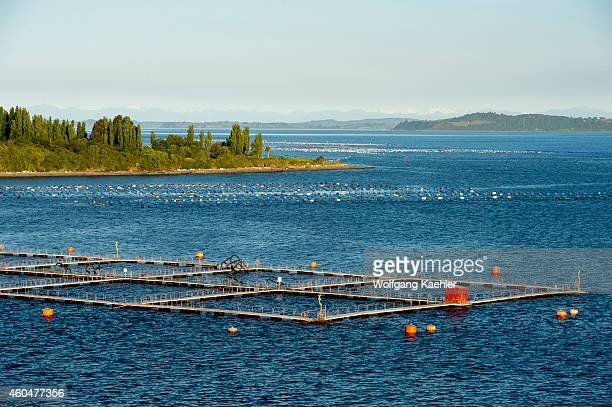 View of salmon and shellfish farms near Chiloe Island in southern Chile