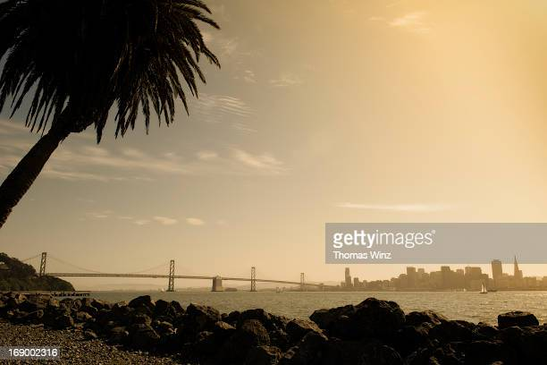 view of san francisco - treasure island california stock pictures, royalty-free photos & images